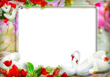 Wedding anniversary photo frames by fast app developer